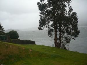 Mar picada en la Ría de Pontevedra – Galicia