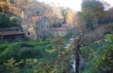 Un paseo por la ribera del río Sarela