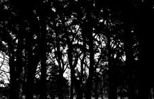 El misterio de las brujas: Parte I